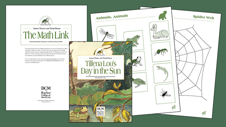 Living things and their needs the math link