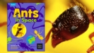 Thumbnail Image for Ants in Space