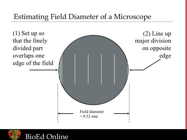 how to find the diameter field of view