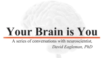 Your Brain is You